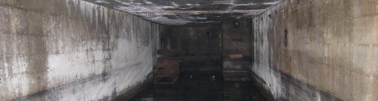 Der Maya Bunker