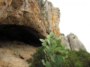 Höhle mit Kaktusfeigen