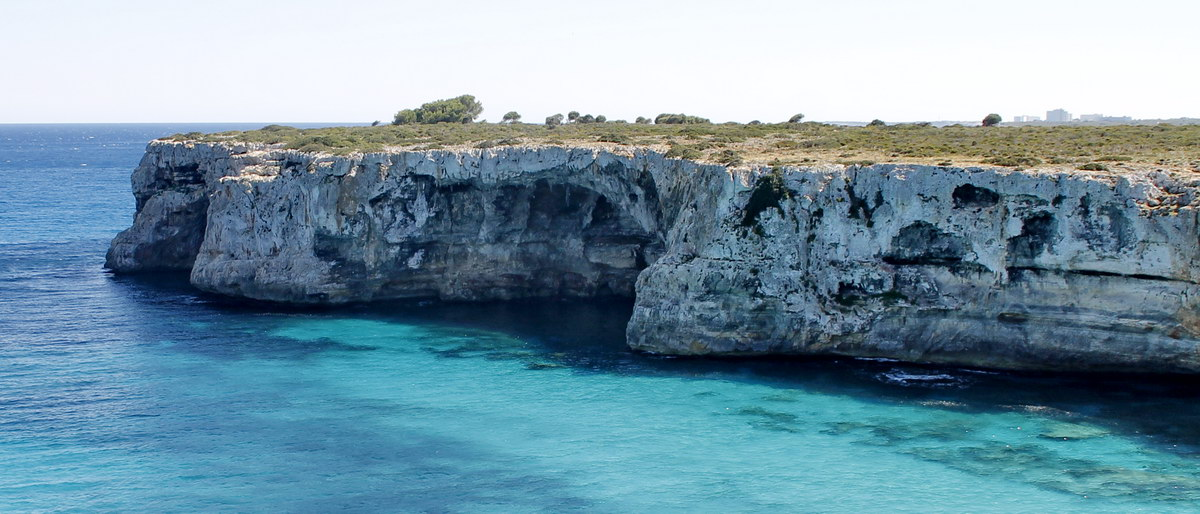Cova de Coloms