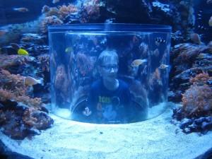 Florida Seaworld Moritz