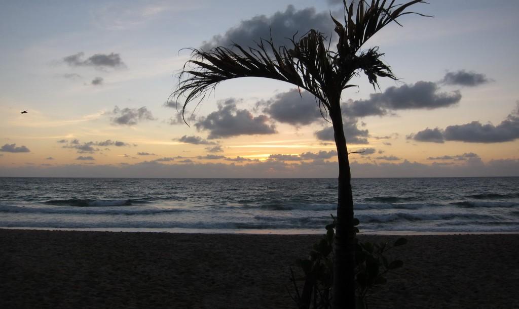 Florida Sonnenaufgang