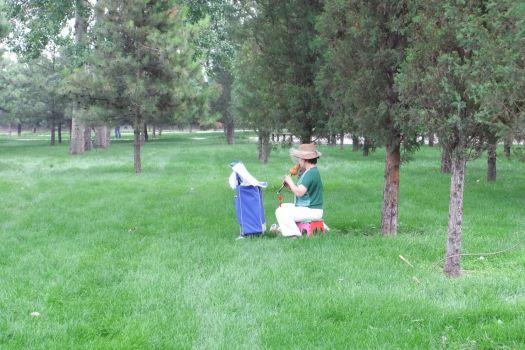 Musik im Park