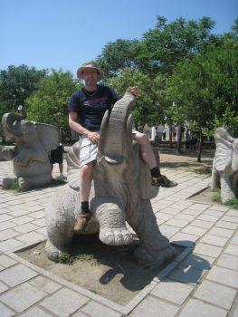 Abenteuer Elefantenritt
