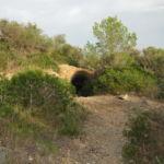 Der Weg mit Bunkereingang