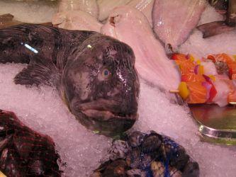 Saluhall - Fischstand