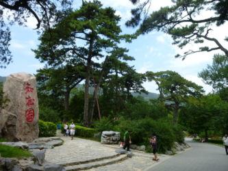 Fragrant Hills - ein tolles Ausflugsziel im Westen Pekings