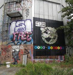 Field Station Art - CDs und Schallplatten